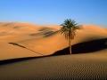 Sahara, Afryka Północna